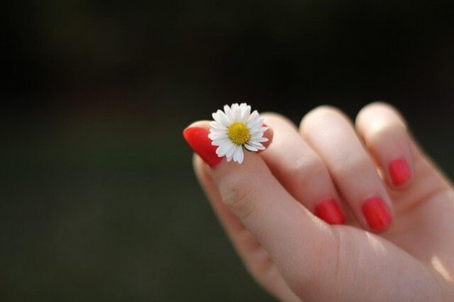 W jaki sposób zrobić tytanowe paznokcie hybrydowe?